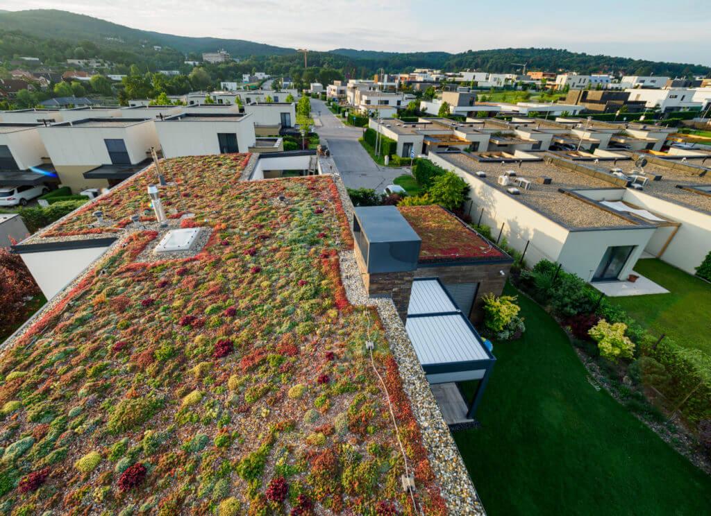 zelená strecha - úspory
