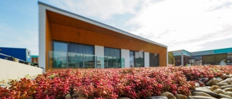 Vyhody zelenej strechy