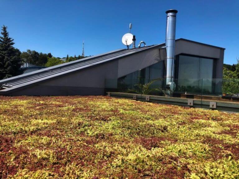 plochá zelená strecha-Bratislava, Koliba