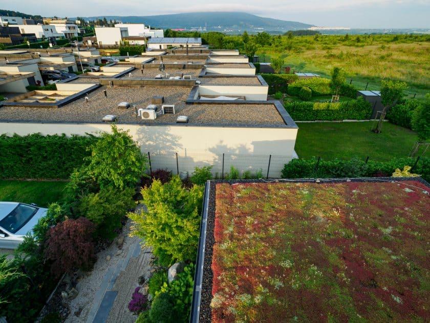 údržba zelenej strechy