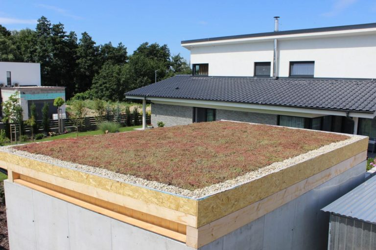 Zelená strecha na letnej kuchyni - vegetačná strecha