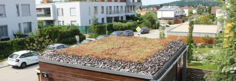 Extenzívna strecha na záhradnom sklade