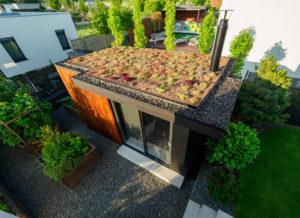 Extenzívna zelená strecha - Záhorská Bystrica