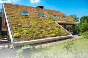 Šikmá zelená strecha