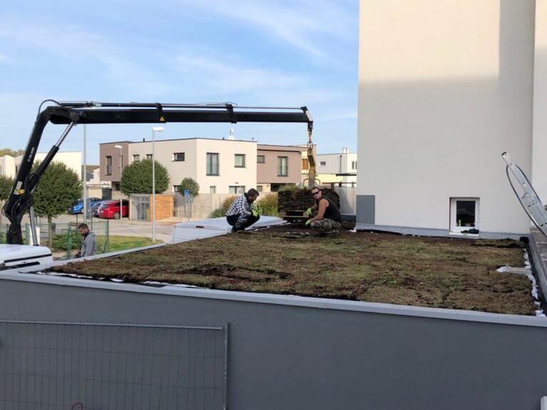 realizácia zelenej strechy
