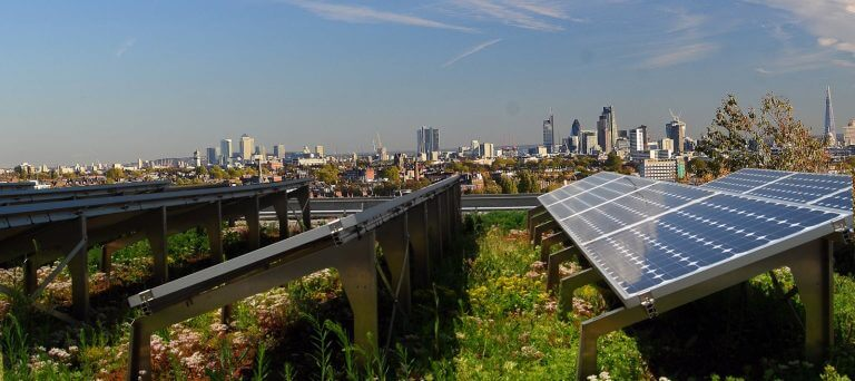 Zelené strechy zefektívňujú produkciu solárnych panelov | zelena-strecha.sk